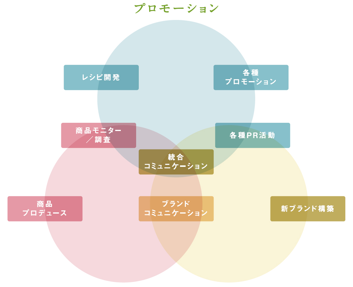 シェフ キャス概念図
