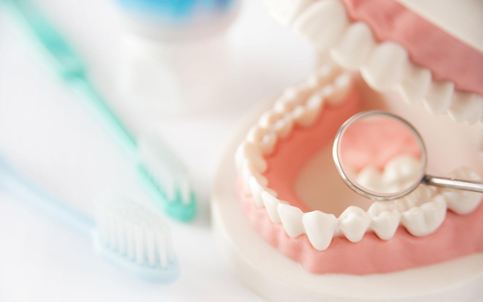 事例紹介 歯科剤メーカー様