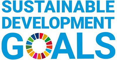 SDGs導入戦略コンサルティング